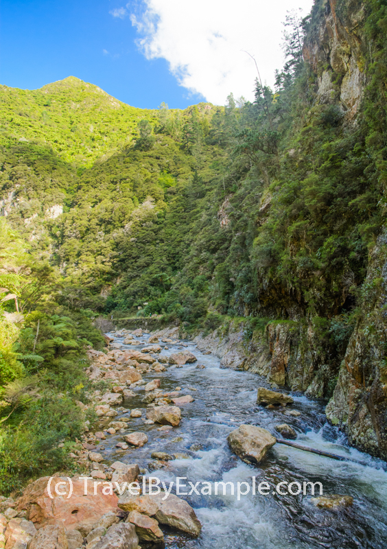Scenic walks of Karangahake gorge